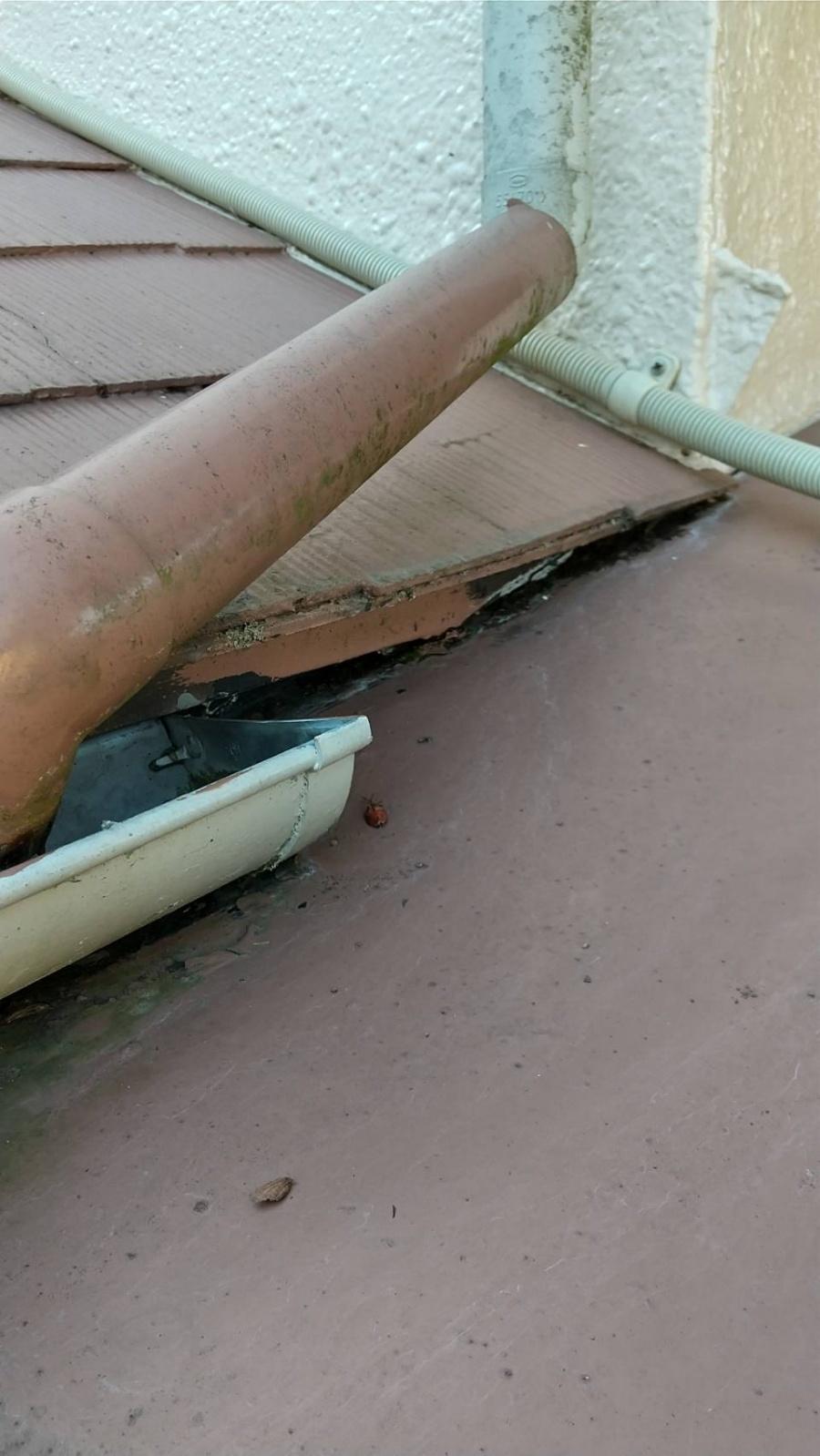 スレート屋根 屋根取り合い部 雨漏り原因