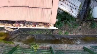 軒樋、台風による被害、落ち葉つまり