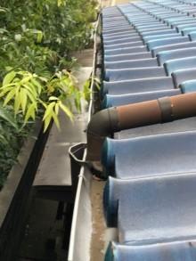 水が溜まった軒樋