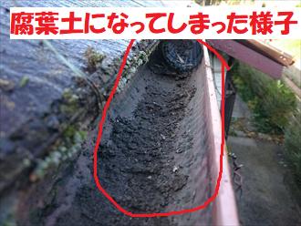 落ち葉ネットにたまった葉が腐葉土に変化した図