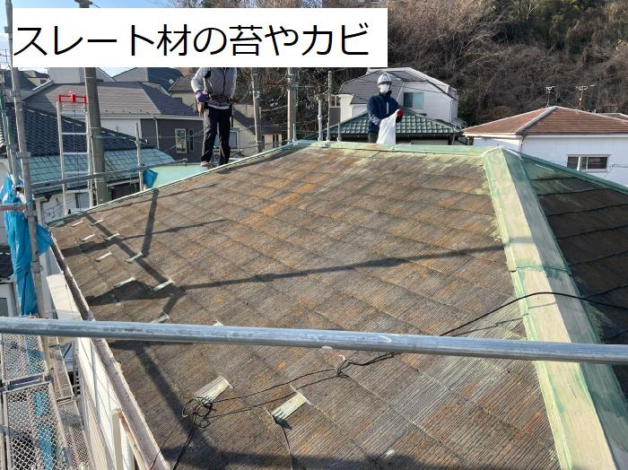 スレート屋根に生える苔