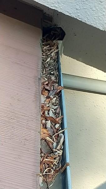 軒樋、雨樋、落ち葉よけネット、破損