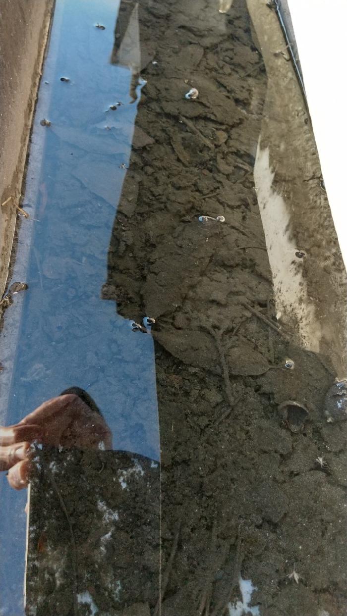 雨水を排水できずに雨が溜まった雨樋